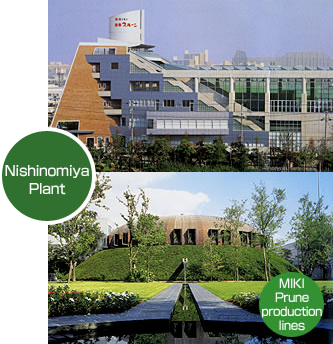 Nishinomiya Plant MIKI Prune production lines