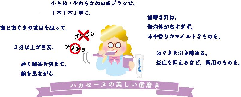 ハカセーヌ_歯磨き